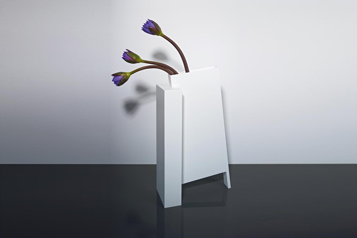 Frédéric Ruyant/Flower quest